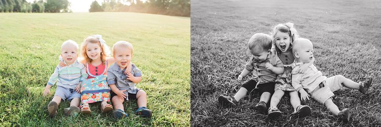 Novi, MI Family Photographer